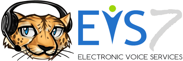 Electronic Voice Services
